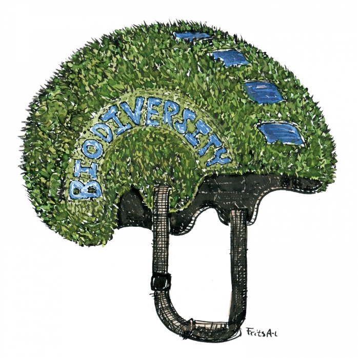 Biodiversitet som en hjelm
