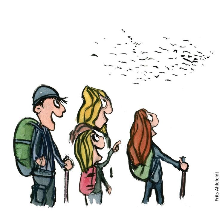 Illustration af gruppe som vandrer sammen mens fugle trækker over dem. Tegning af Frits Ahlefeldt - Tegning af