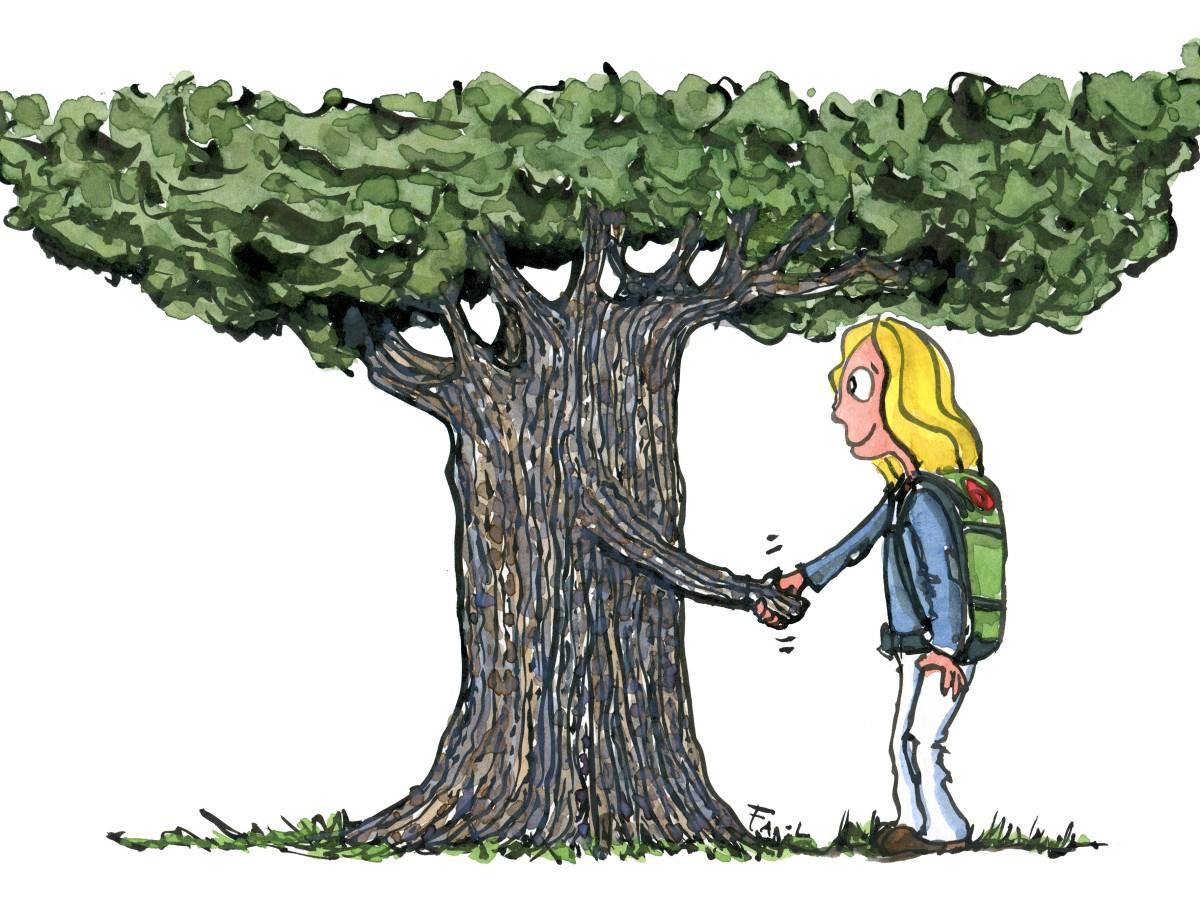 illustration af vandrer som giver håndtryk med et træ Tegning af Frits Ahlefeldt