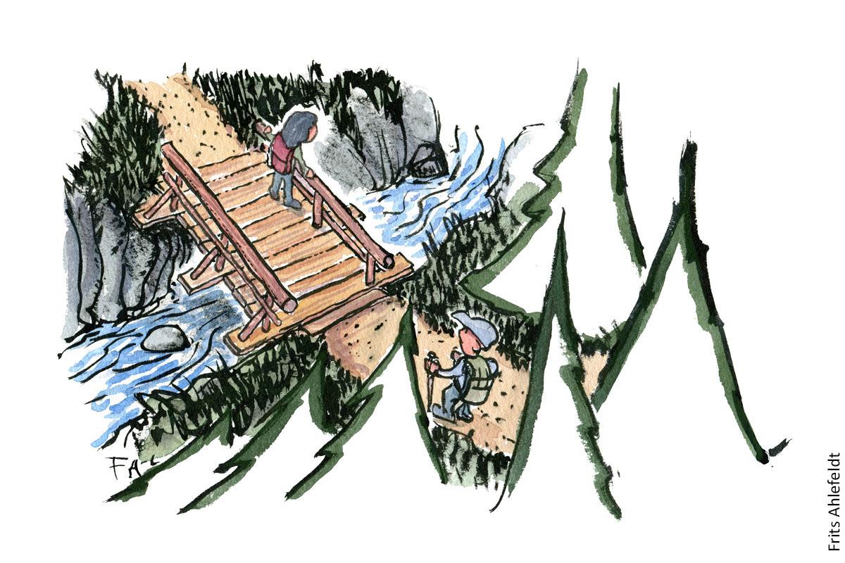 illustration af vandrer på bro over vandløb. vandrestier design og vedligeholdelse. Tegning af Frits Ahlefeldt