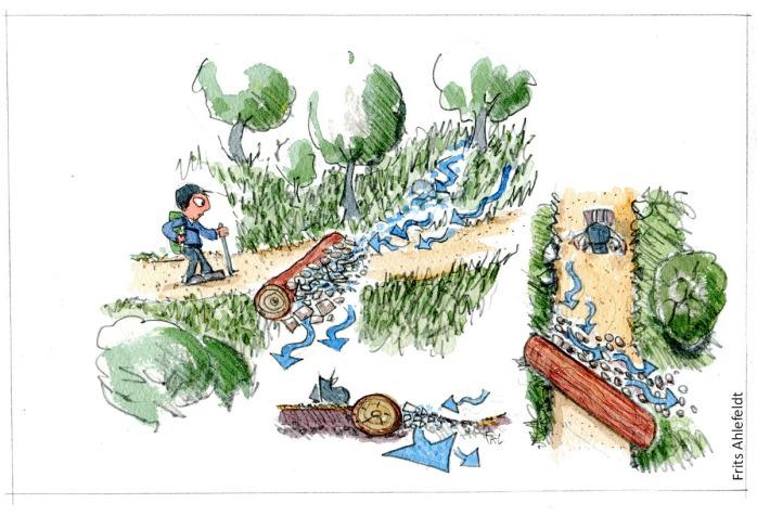 Tegning af sti hvor der er lagt en træstamme på tværs for at stoppe vand i at løbe langs stien. vandrestier design og vedligeholdelse. Tegning af Frits Ahlefeldt