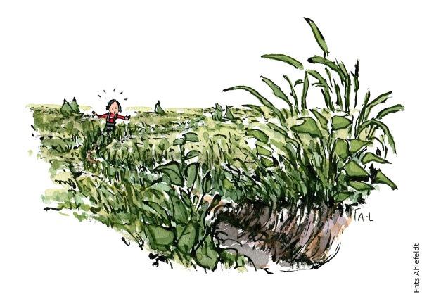 Illustration af en overgroet vandresti, med en fortvivlet vandrer. vandrestier design og vedligeholdelse. Tegning af Frits Ahlefeldt